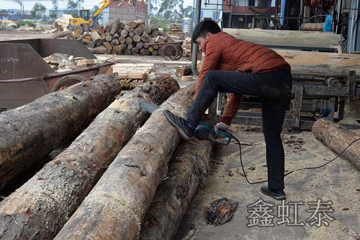 广西建筑模板厂家使用的木材