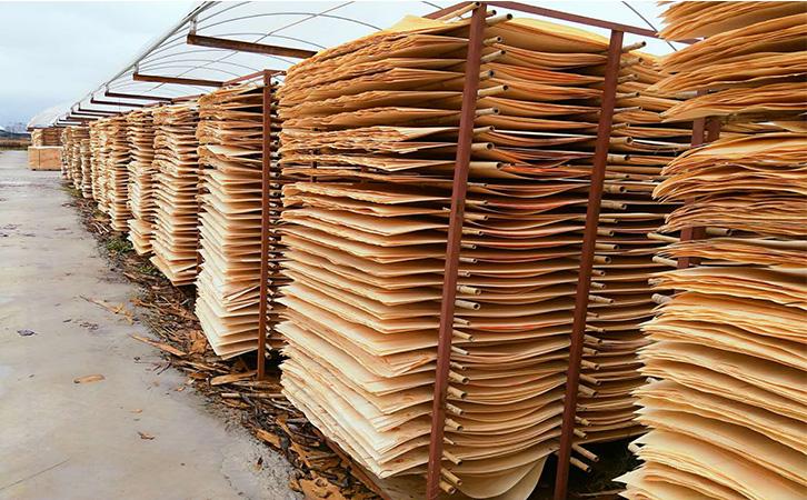 建筑板材单板晾晒场