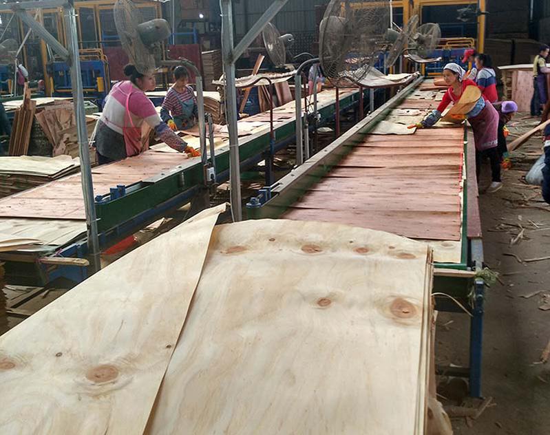 覆膜清水模板厂家生产建筑模板中