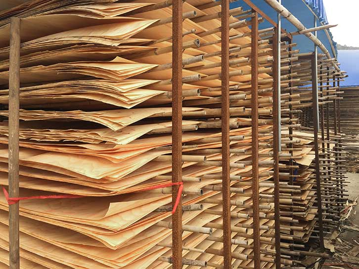 酚醛镜面建筑模板单板晾晒