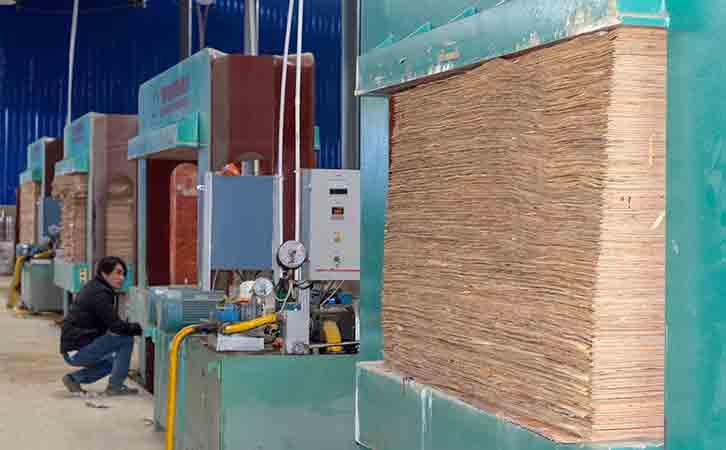 广西建筑模板十大品牌-优**质厂家鑫虹泰的生产设备冷压机